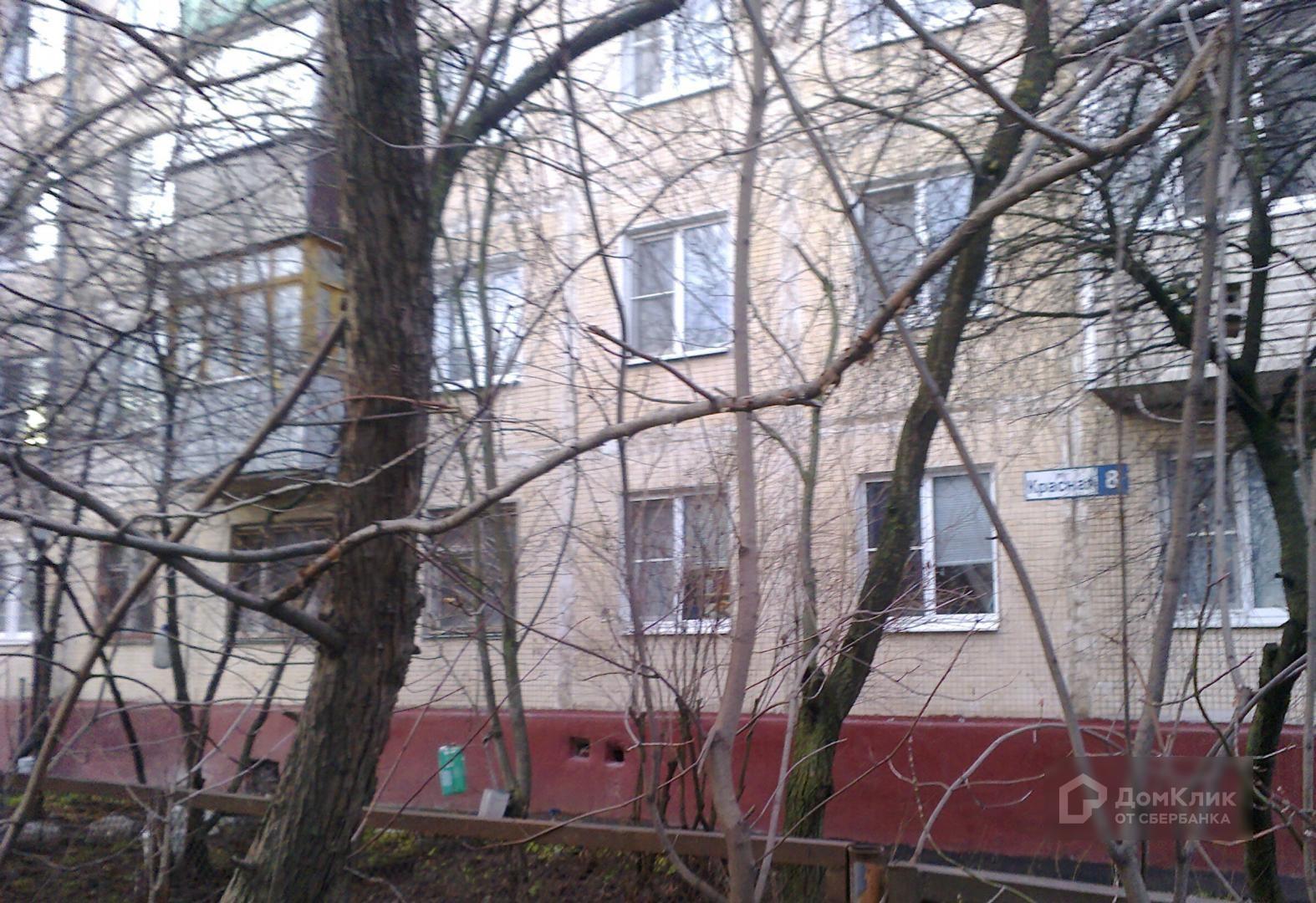 Краснодар музей изобразительных им коваленко фото крепкая розетка